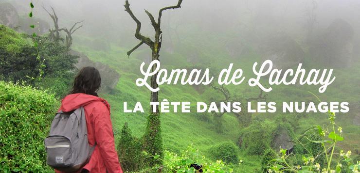 Que faire à Lima : les Lomas de Lachay