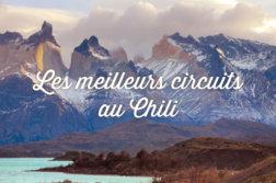 circuit Chili